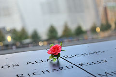 Red rose on 911 memorial. A shot of a red rose laid on top of the names in 911 memorial Stock Images
