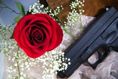 Red Rose And Babys Breath With A Gun Stock Photo