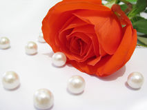 Red Rose And Pearls Royalty Free Stock Image