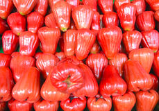 Red rose apple Stock Photos