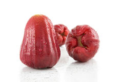 Red rose apple on white background. Stock Photo