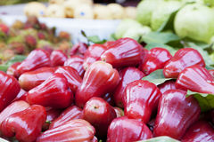 Red rose apples Stock Photography