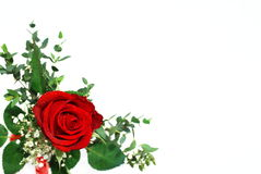 Red rose arrangement Stock Photos