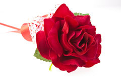 red rose artificial isolated Royalty Free Stock Images