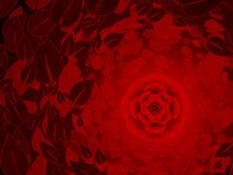 Red rose background vector illustration