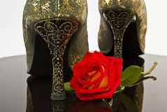 Red rose on a background of female golden heels. Stock Images