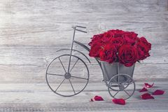 Red rose in bicycle vase. On a wooden background Stock Images
