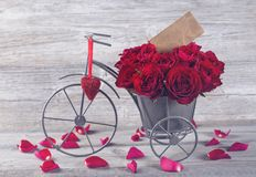 Red rose in bicycle vase stock photos