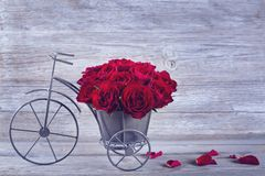 Red rose in bicycle vase. On a wooden background Royalty Free Stock Images