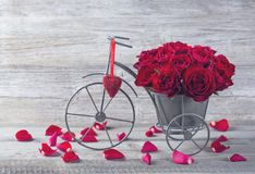 Red rose in bicycle vase. On a wooden background royalty free stock image