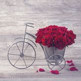 Red rose in bicycle vase. On a wooden background stock image