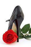Red rose and a black shoe Stock Images