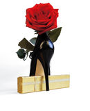 Red rose and a black shoe Stock Photography