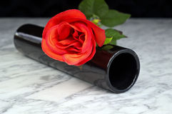 Red rose with black vase on a marble table Stock Image
