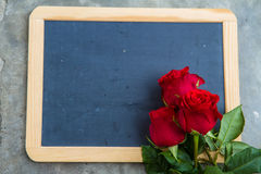 Red rose on blackboard Royalty Free Stock Photography