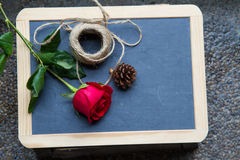Red rose on blackboard Stock Photography