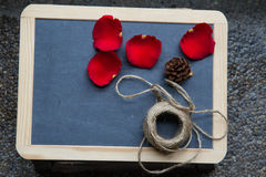 Red rose on blackboard Stock Images