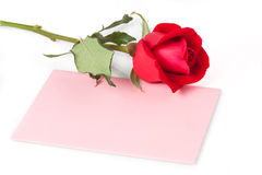 Red Rose with Blank Card Royalty Free Stock Photo