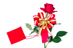 Red rose with blank card Stock Photos