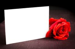 Red rose and blank gift card for text on old wood background Stock Photo