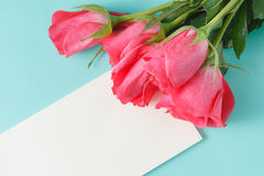Red rose and blank gift card for text on paper background Stock Photos