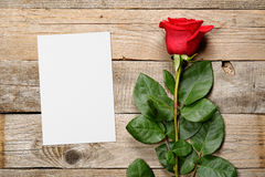 Red rose and blank greeting card Stock Photos