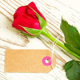 Red rose and blank label Royalty Free Stock Image