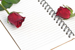 Red rose on blank notebook Stock Photos