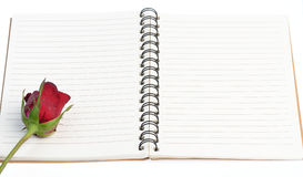 Red rose on blank notebook Royalty Free Stock Photography
