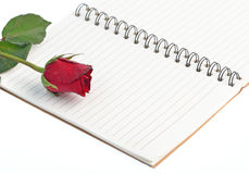 Red rose on a blank notebook isolated on white background Stock Photos