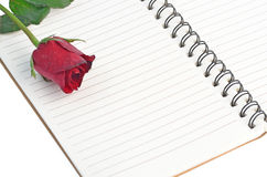 Red rose on a blank notebook isolated on white background Stock Photography