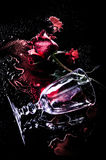 Red rose on blood Stock Photography