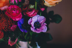 Red Rose Beside Blue and Pink Petaled Flower in White Ceramic Vase Stock Photography