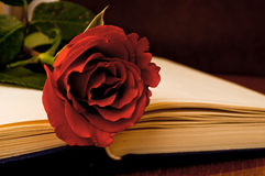 Red rose and book Royalty Free Stock Photos