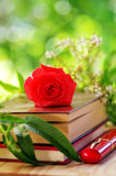 Red rose on book Royalty Free Stock Photography