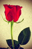 Red rose and book, for Saint Georges Day in Catalonia, Spain Royalty Free Stock Photos