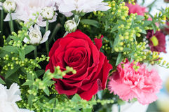 Red rose in a BOUQUET Royalty Free Stock Photography
