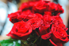 Red Rose Bouquet Royalty Free Stock Photo