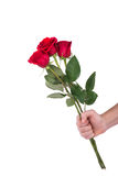 Red rose bouquet flower in hand men isolated with clipping path Stock Photo