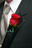 Red Rose Boutonniere Stock Photography
