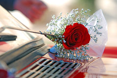 Red rose  boutonniere closeup Stock Image