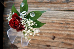 Red rose  boutonniere closeup Royalty Free Stock Photos