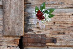 Red rose  boutonniere closeup Royalty Free Stock Photo