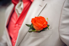 Red Rose boutonniere. On white suit and red shirt royalty free stock photo
