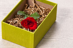 Red rose in box. Red rose in the gift bon on wood table Stock Photos