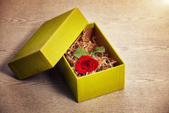 Red rose in box. Red rose in the gift bon on wood table Royalty Free Stock Photo