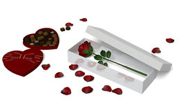 Red Rose in a box. Royalty Free Stock Photos