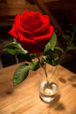 Red Rose. A bright rose with a long stem in a vase Stock Photos