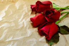 Red rose on brown crumpled paper Royalty Free Stock Photo