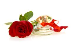 Red rose bud and bottle of perfume Stock Image